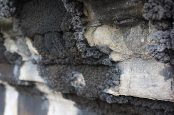 Carbon Sulphation Deposits Limestone Masonry Poultice Treatment